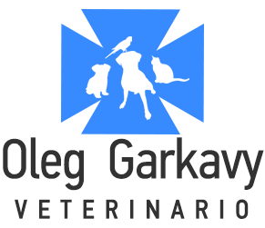 Logo Footer Veterinary